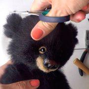nabor_dlya_videokursa_teddy_blackberry_4