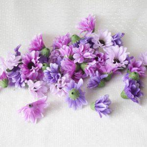Астра фиолетовая