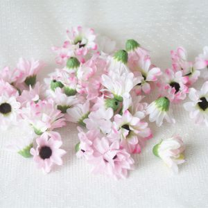 Астра розовая