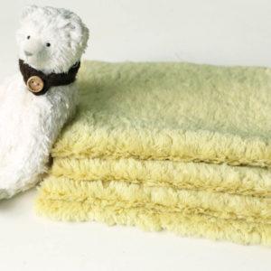cotton_0421-05