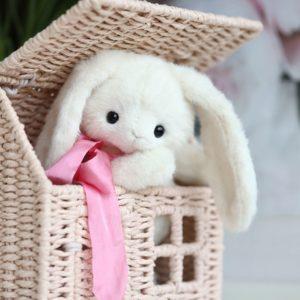 nabor-rabbit-klimova